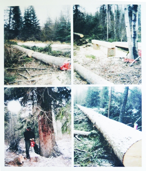 Images of Jack Lynis falling trees and hewing them with chainsaw only (courtesy of Jack Lynis)