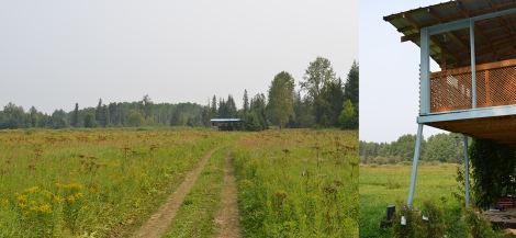 Approach to muskeg house