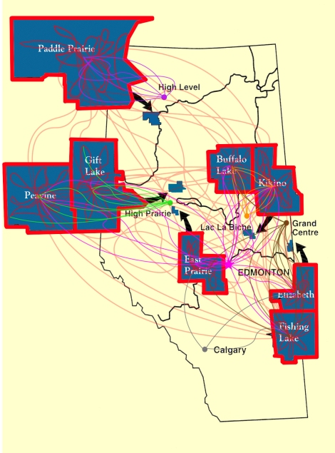 Graphic representation of the various linkages between the Alberta settlements and with neighbouring non-Métis communities