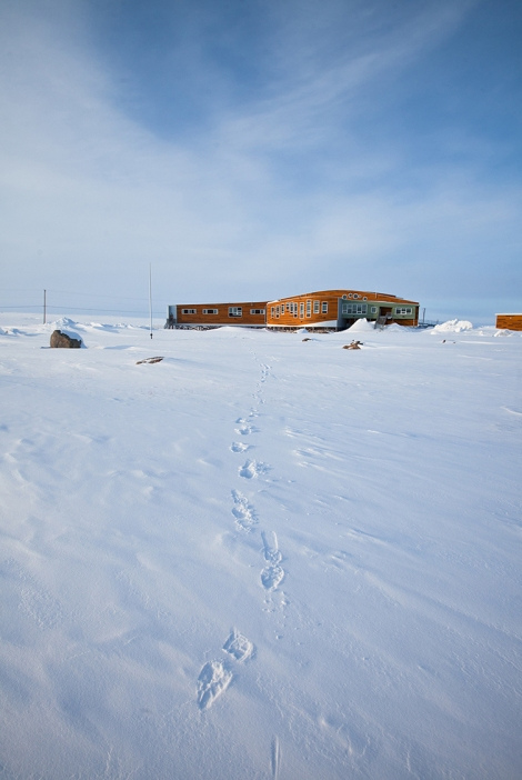 Piqqusilirivvik Inuit Cultural Learning Facility, Clyde River. (Photo courtesy of H. Burdett Moulton)